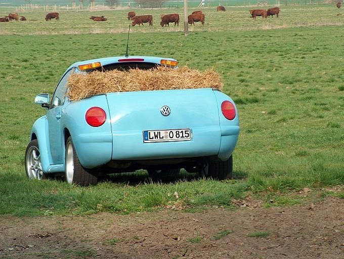 Hay bail in VW beetle