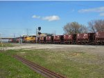 CN 2007, CN 8821, BCOL 4651, and CN 5542