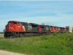 CN 8953, CN 2656, CN 2137, and CN 2110
