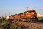 Northbay-bound BNSF at Maltby, CA
