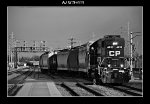 CP 4439