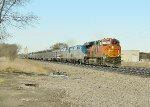 Amtrak 8 with BNSF help