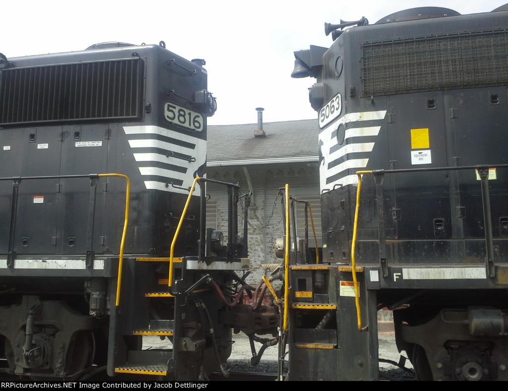 NS 5063 and NS 5816
