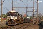 NS 1099 17G06