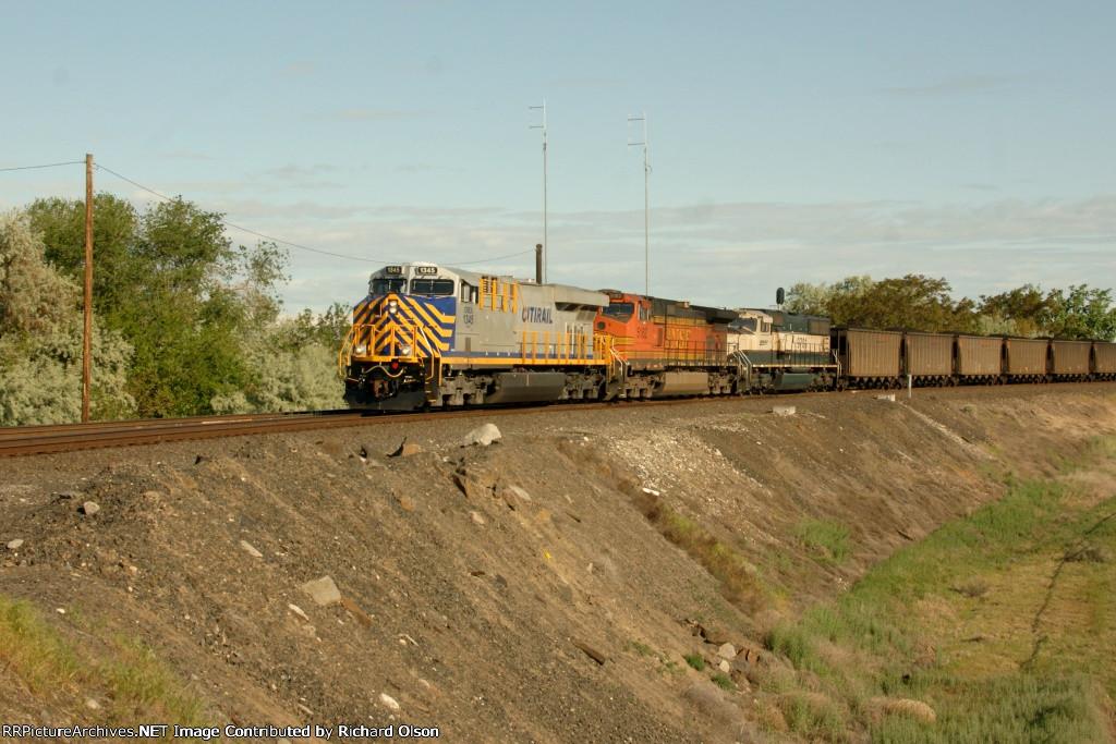 Centralia Coal