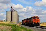 BNSF 6315 leads a manifest train in Hatton