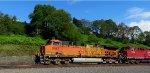 BNSF 5667 leading CP 9554