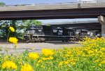 NS SD70ACe #1026 off of NS 64K
