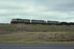 BNSF 9829, 9499, & 9699 on southbound train.