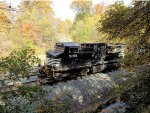 Norfolk Southern in the woods