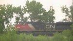 CN 8881