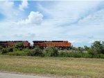 SB BNSF stack train