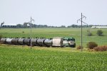 IARR 3004 northbound with eight cars from the Pine Lake ethanol plant plus a buffer