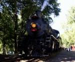 Excursion train