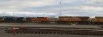 UP 5529-UP 5361-BNSF 5050-NS 8152