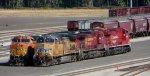 UP 5854-CP 8552-CP 8134-BNSF 5251