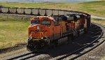 BNSF 6096StCfdS1