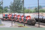 Several export locomotives sit in the yard awaiting further movement