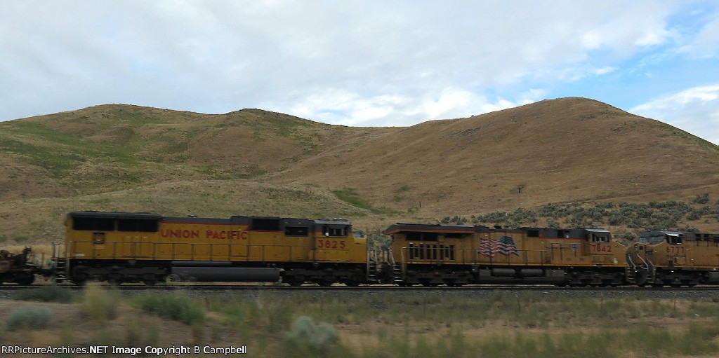 UP 7842 - UP 3825