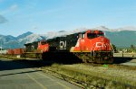 CN 2256 & CN 2668 ease in to Jasper with a long intermodal freight, on Thanksgiving, October 2008.