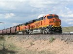 BNSF 8074 on point of grain train