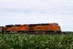 BNSF6282 and BNSF9271