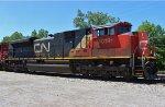 CN 8019