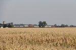 218 rolls east across the flat farmlands of northwestern Ohio