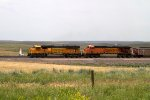 BNSF9948 and BNSF5872
