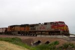 SF722 and BNSF9405