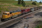 BNSF9877 and CP8855