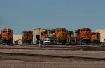 BNSF5981, BNSF7838, BNSF9472, BNSF9178, BNSF6235 and others outside the diesel depot
