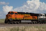 BNSF5787 and BNSF9694