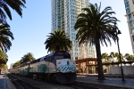Trains and Palm Trees.