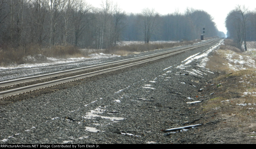 NS Youngstown Line Single Track In Gustavus