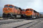 Paused coal trains wait their turn