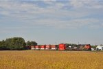 CN 8006 On NS 25 A Eastbound