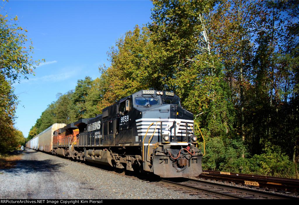 NS 9559 Train 290
