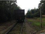 Herzog Rock Train