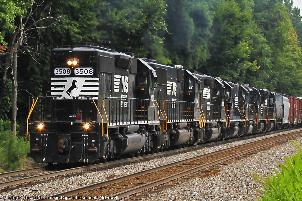 NS P61 and a Plethora of Power