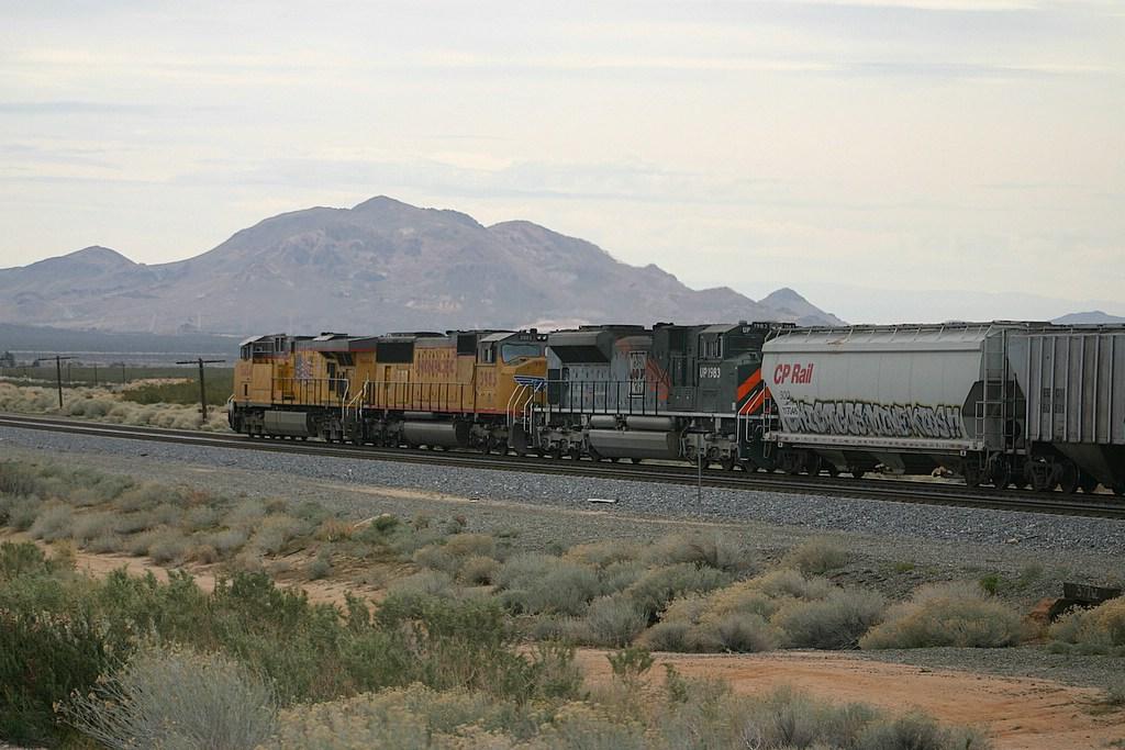 Under Mojave Skies