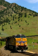 UP 5679 at Blue Mountain crossing, Co