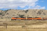 BNSF 9129 and BNSF 8799