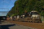 NS D9-44CW 9863 leads K038