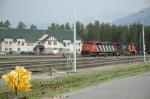 CN 5541