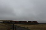 BNSF 9300, BNSF 6238, and BNSF 9334