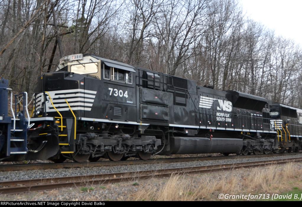 NS 7304