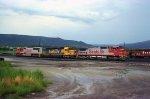 BNSF 8273 Raton Yard