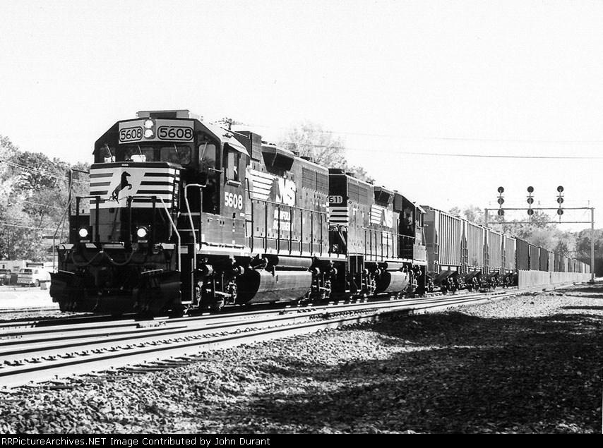 NS 5608 on H-55