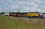 A very colorful consist